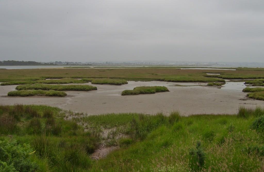 Harbour View 1